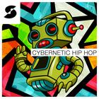Cybernetic hip hop 1000