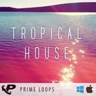 Tropicalhouse6