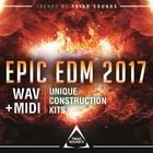 Triadsounds epicedm2017