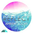 Reflect 1000
