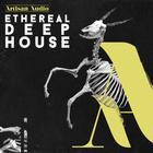Artisanaudio edh deephouse 1000