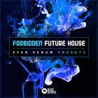 Forbidden future house   artwork
