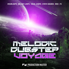Pm   melodic dubstep voyage   artwork 1000 x 1000