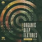 Organic deep textures electronica samples