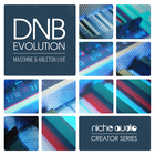 Niche creator series dnb evolution 1000 x 1000 web